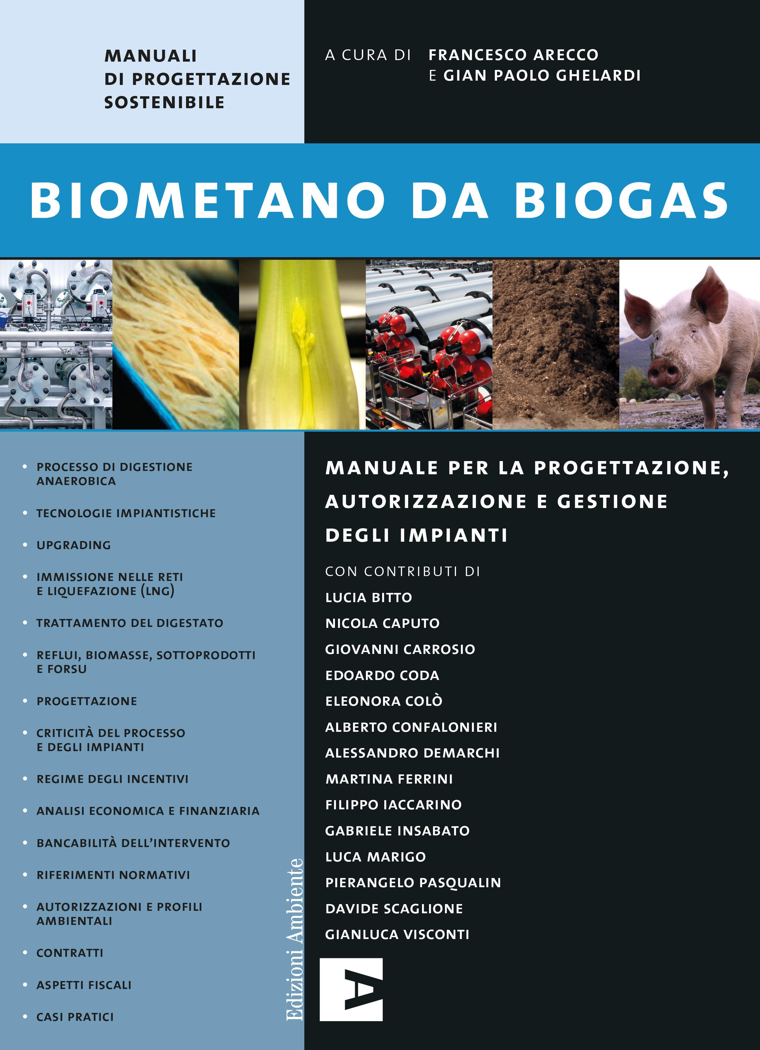 Biometano da biogas